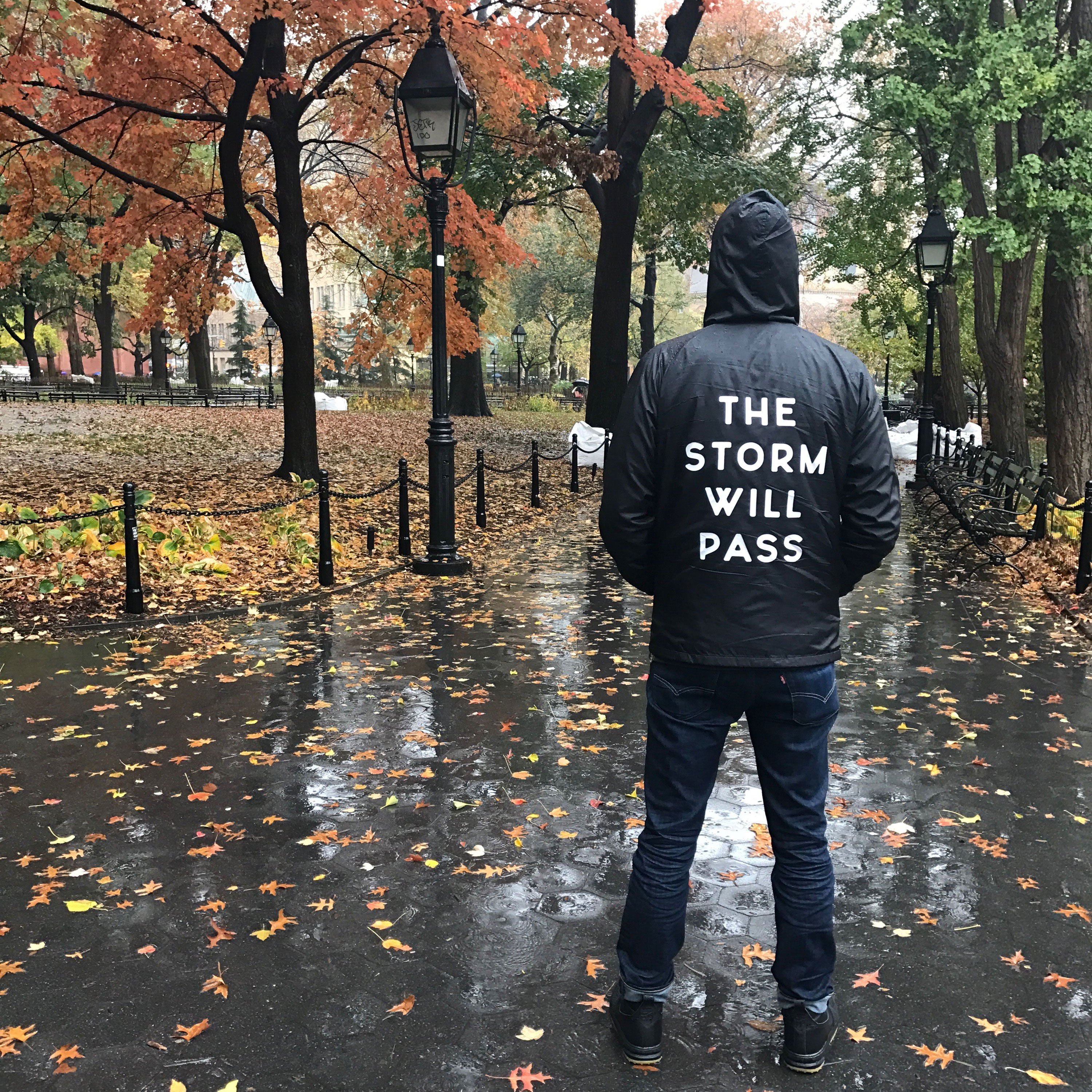 THE STORM WILL PASS jacket